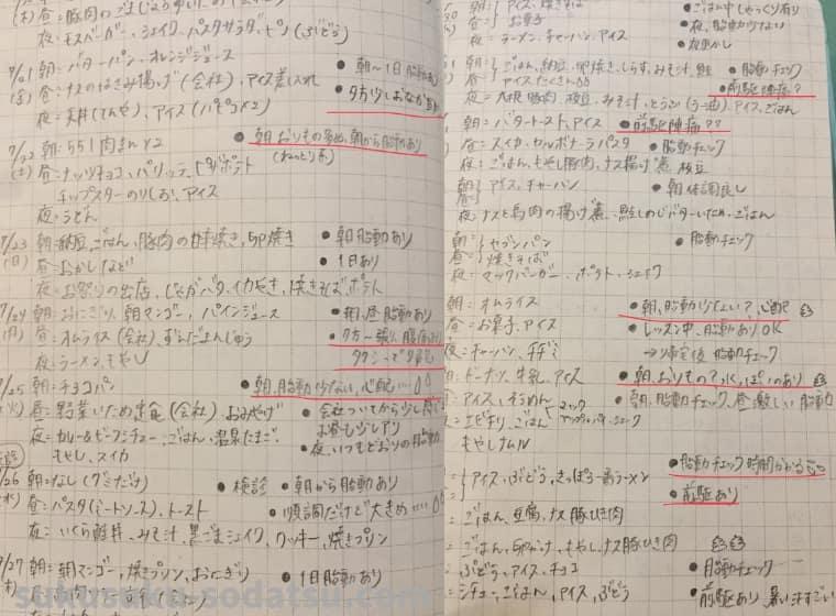 手帳に書かれた文字
